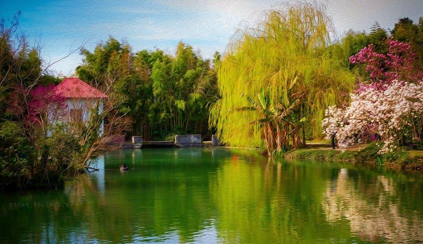 Парк Южные культуры - фото