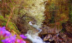 33 водопада весной - фото
