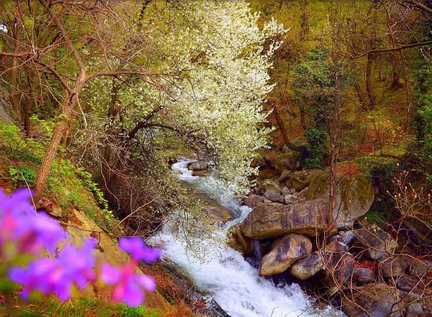 Деревянные настилы к водопадам - фото