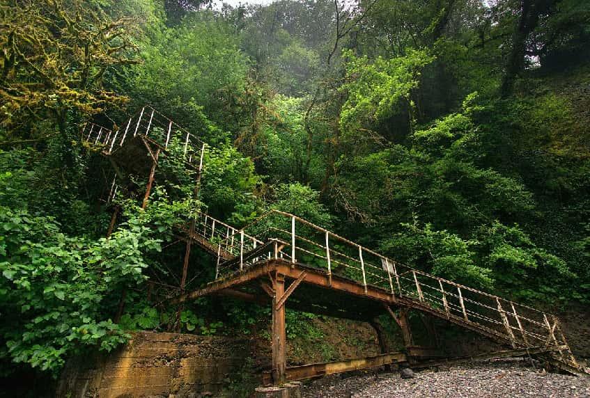 Лестница к Ореховскому водопаду - фото