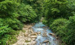 Река Агуру - фото