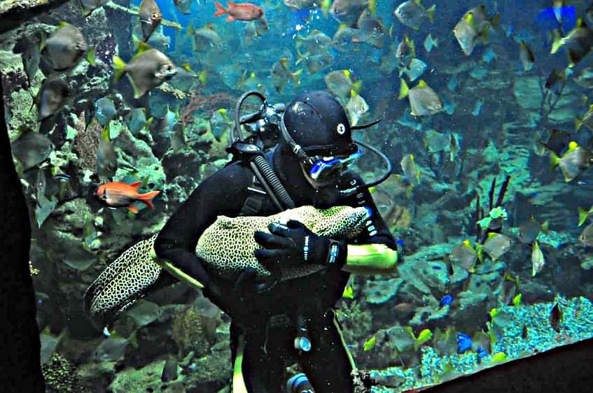 Океанариум Тайны океана - фото