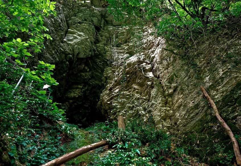 Пещера в тисо-самшитовой роще - фото