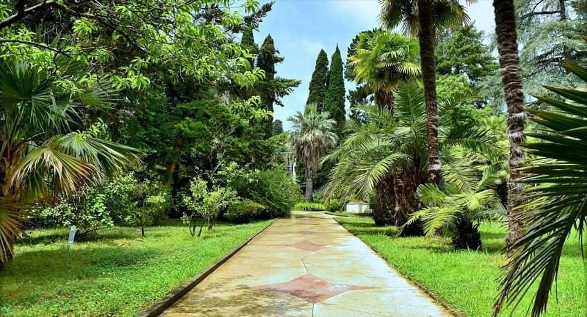 Ухоженная территория паркового комплекса - фото