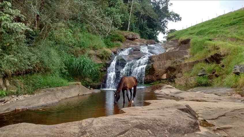 Варваровский водопад - фото