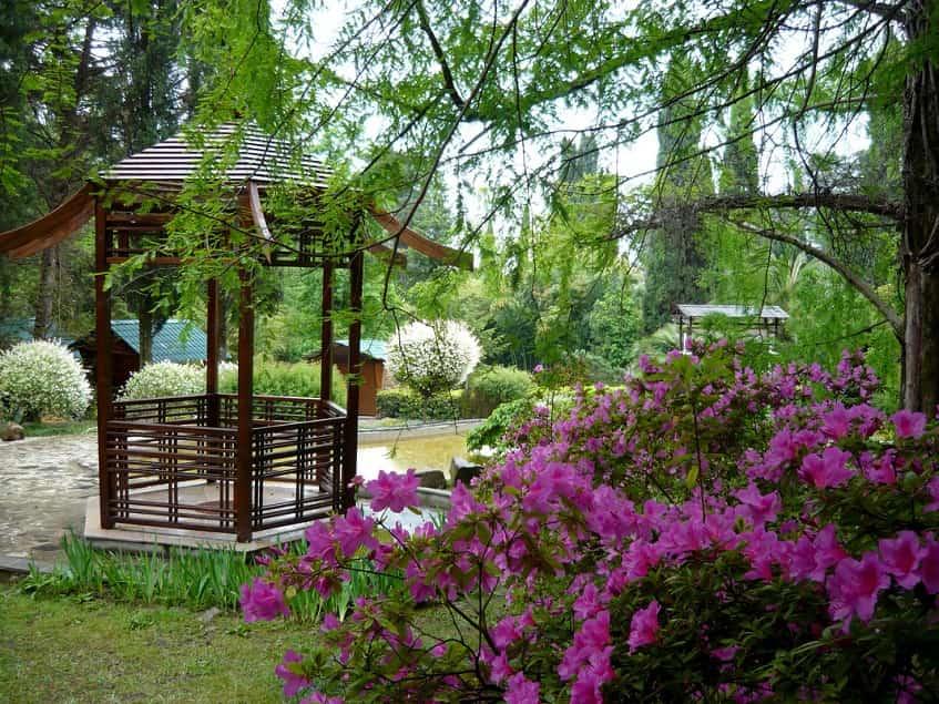 Японский садик - фото