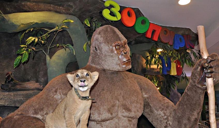 Зоопарк Рио - фото