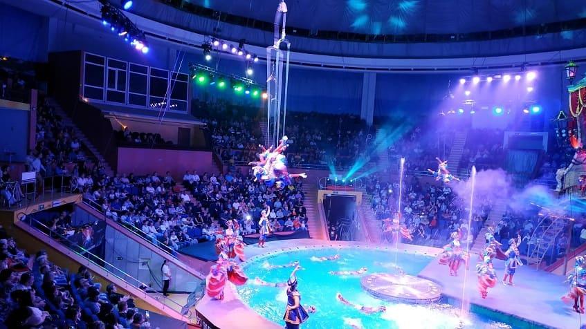 Цирковое выступление - фото