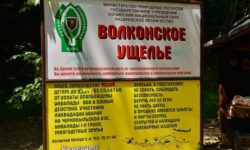 informacionnyj-stend-volkonskogo-ushchelya