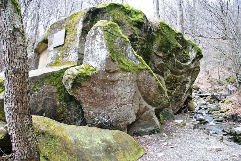 Волконский дольмен в Лазаревском - фото