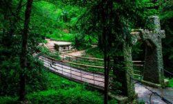most-k-dolmenu