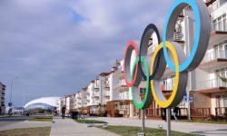 Олимпийские кольца в деревне - фото