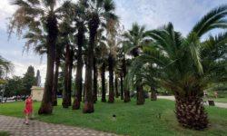 Приморский парк - фото