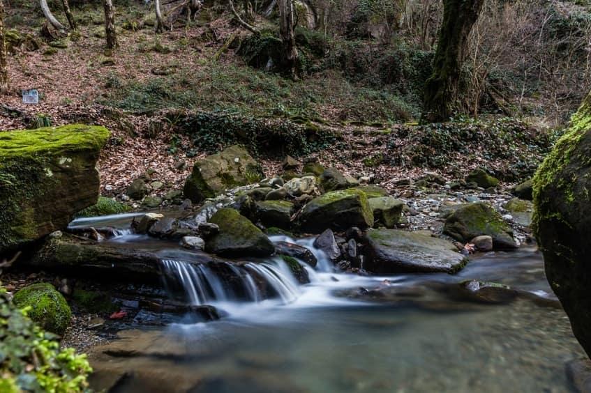 Река Годлик - фото