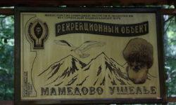 derevyannyj-stend-ushchelya