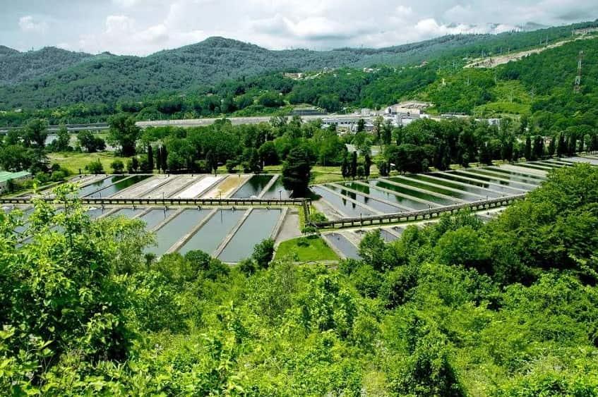 Форелевое хозяйство с высоты - фото