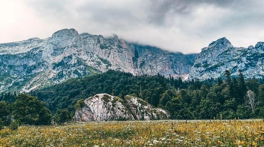 Горно-лесной пояс - фото
