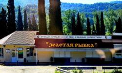 magazin-zolotaya-rybka