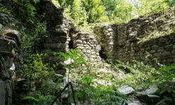 ruiny-v-chashche-reliktovogo-lesa