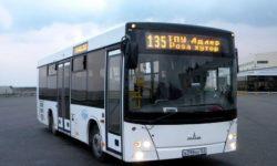 avtobus-135